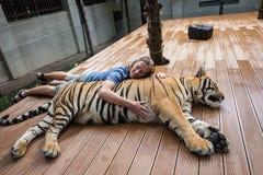 拥抱老虎的人 免版税图库摄影