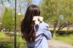 拥抱逗人喜爱的起重器罗素狗小狗的可爱的少妇背面图在公园,绿色草坪,叶子背景 femal的行家 免版税图库摄影
