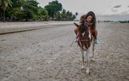 拥抱马的海滩的少妇 免版税库存图片