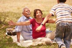 拥抱年轻男孩的祖父母资深夫妇在野餐 库存图片