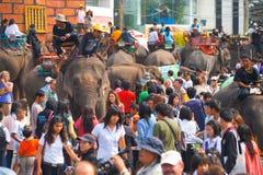 拥挤大象h人海运 库存图片