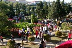 拥挤,大叻花公园,节日,春天,游人 免版税库存照片