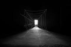 阻拦门方式的Spiderwebb 免版税图库摄影