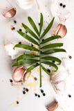拨蒜和一个热带植物的叶子在白色文本说谎 库存照片