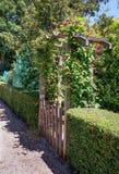 拱廊长满与上升充分种植美丽的花 免版税库存图片