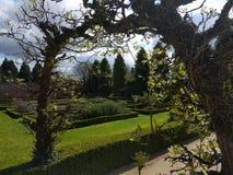 拱道到庭院里 免版税库存照片