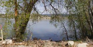 拱道向湖 免版税库存图片