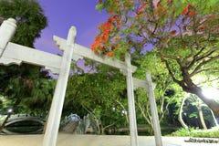 拱道和火焰树花夜视图 免版税库存图片