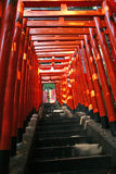 拱道torii 图库摄影