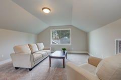 拱顶式顶棚与灰色油漆颜色的家庭娱乐室内部 库存照片