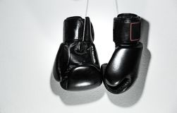 拳击手套 免版税库存照片