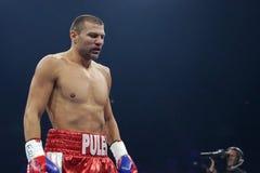 拳击手泰尔韦尔Pulev 免版税库存图片