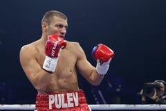 拳击手泰尔韦尔Pulev 库存图片