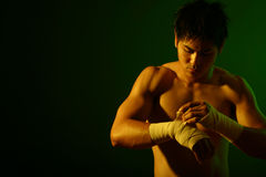 拳击手系列 免版税图库摄影