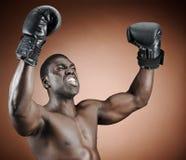 拳击手赢取 免版税库存图片
