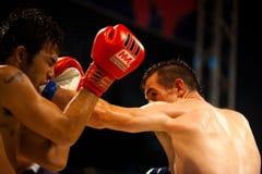 拳击手顶头左muay打孔机冒汗了泰国 免版税图库摄影