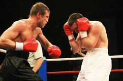 拳击 免版税库存图片