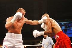 拳击 免版税图库摄影