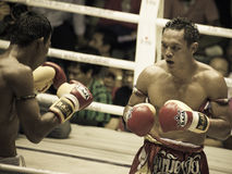 拳击Muay泰国慈善在泰国 免版税图库摄影