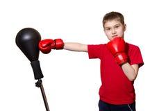 拳击手套的小男孩在白色背景 库存图片