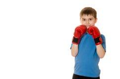 拳击手套的小男孩在白色背景 免版税库存照片
