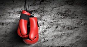 拳击手套 库存照片