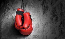 拳击手套 免版税图库摄影