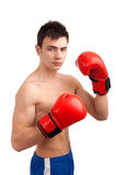 拳击手画象  图库摄影
