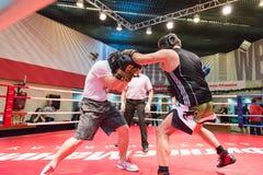 拳击锻炼训练 库存照片