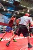 拳击锻炼训练 免版税库存照片