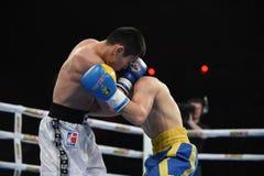 拳击联赛:乌克兰Otamans对俄国拳击队 库存图片