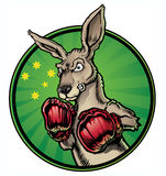 拳击袋鼠 免版税图库摄影
