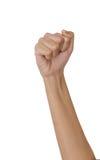 拳头,手 免版税库存图片