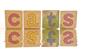 拼写瓦片的猫木 免版税库存图片
