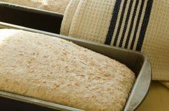 拼写的面包 免版税图库摄影