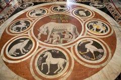 拼花地板在锡耶纳大教堂里,锡耶纳,托斯卡纳,意大利 图库摄影