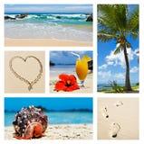 拼贴画热带海岛的场面 库存照片