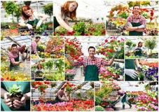 拼贴画花托儿所-工作在托儿所的男人和妇女- PR 图库摄影
