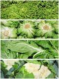 拼贴画蔬菜 免版税库存图片