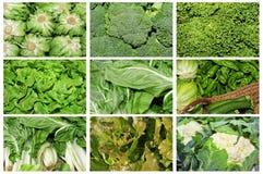 拼贴画蔬菜 免版税库存照片