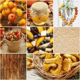 拼贴画用秋天食物和装饰 免版税库存图片