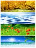 拼贴画四个季节 免版税库存照片