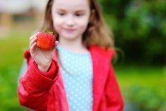 拿着一个成熟草莓的逗人喜爱的小女孩 库存图片