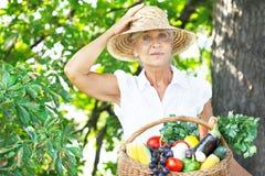 拿着一个篮子用水果和蔬菜的妇女 免版税库存照片