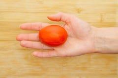 拿着一个红色复活节彩蛋的女性手 免版税库存图片