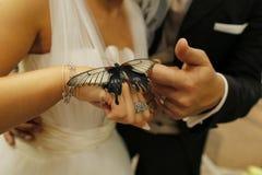 拿着一只大蝴蝶的新娘夫妇 库存照片