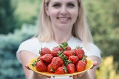 拿着一块板材用很多草莓的迷人的妇女 库存照片