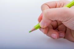 拿着一支绿色铅笔的手 免版税图库摄影