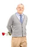 拿着一朵红色玫瑰的一个成熟微笑的绅士 免版税库存照片