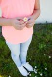 拿着一朵美丽的雏菊的手 库存照片
